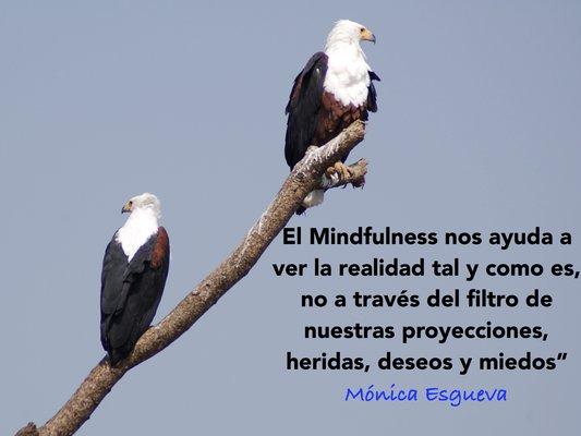 mindfulness_trabajo_y_organizaciones